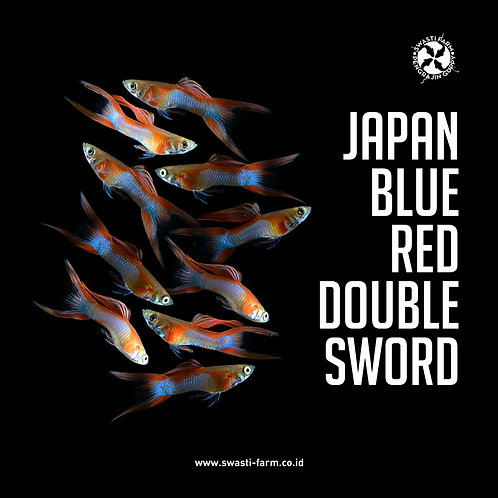 JAPAN BLUE RED DOUBLE SWORD