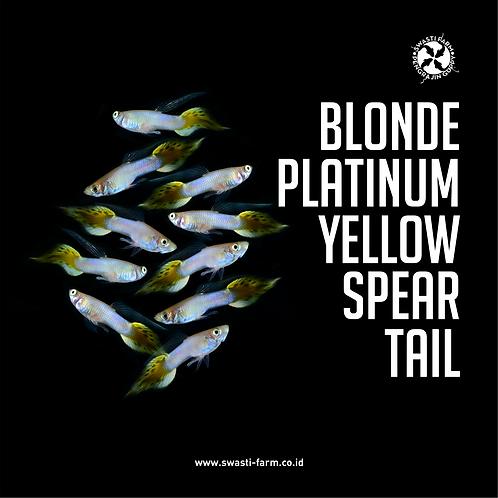 BLONDE PLATINUM YELLOW SPEAR TAIL