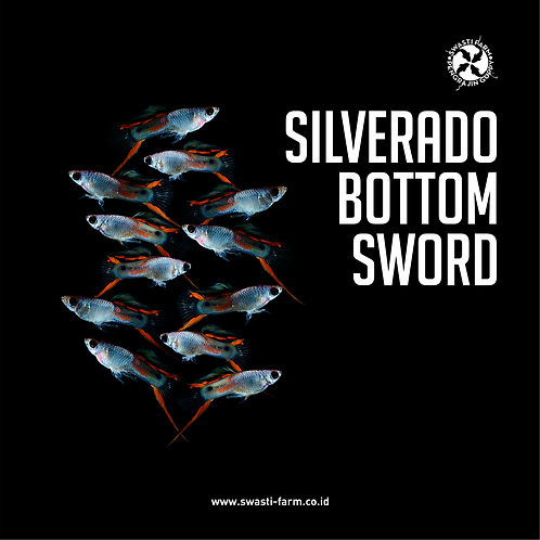 SILVERADO BOTTOM SWORD
