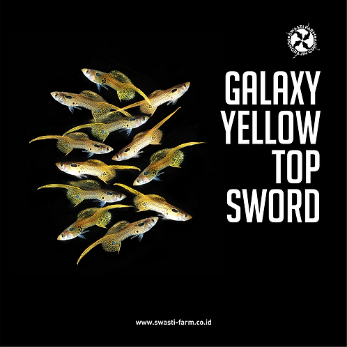 GALAXY YELLOW TOP SWORD