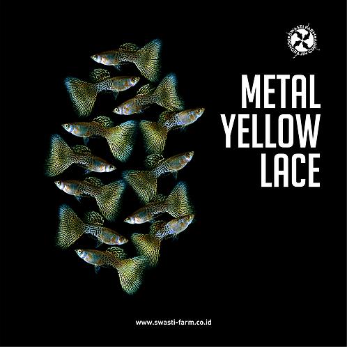 METAL YELLOW LACE