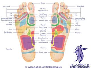 January Detox – Can reflexology help?