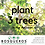 Thumbnail: Bosqueros NGO Donation - Plants 3 trees in the Amazon!