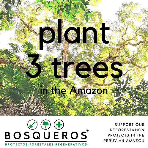 Bosqueros NGO Donation - Plants 3 trees in the Amazon!