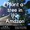 Thumbnail: Plant a tree in the Amazon! (Bosqueros Peru Donation)