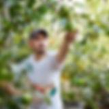 migrant worker.jpg