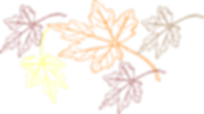 falling-leaves-multiple-colors-hi.png