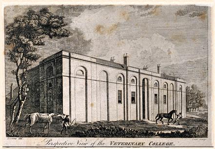 London Veterinary College