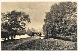 1881 View From Waterfurlong