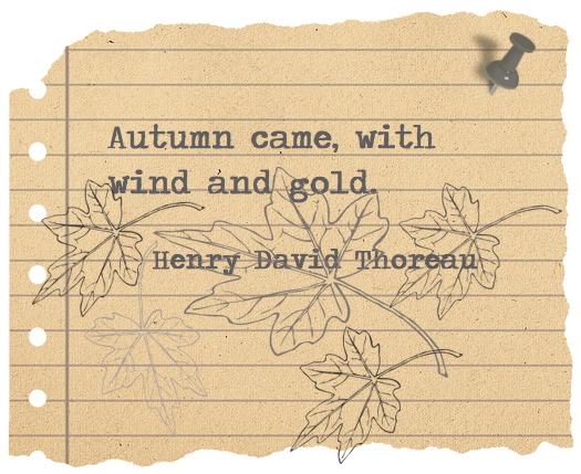 Wind And Gold ...
