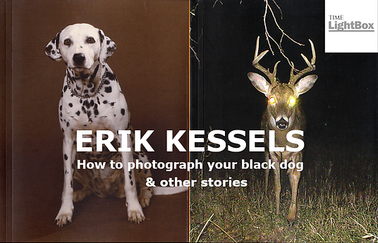 ERIK KESSELS HOW TO PHOTOGRAPH YOUR BLACK DOG & OTHER STORIES SEYMOUR MILTON COMPOSER