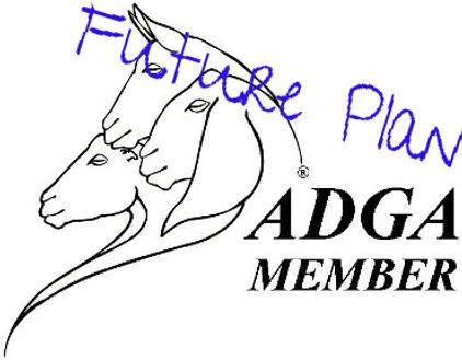 ADGA Logo.JPG 2015-6-18-13:40:54