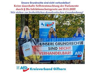 Infektionss AfD Gifhorn 2.jpg