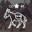 BurroRaces_Logo.jpg