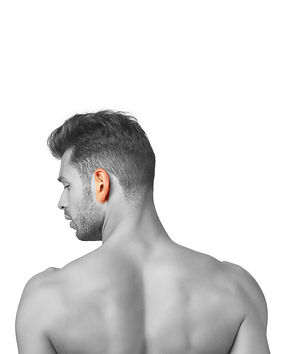 LL-hairremoval-ears.jpg