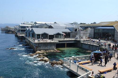 Additional Networking Monterey Bay Aquarium Event