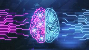 Pink Brain, Blue Brain