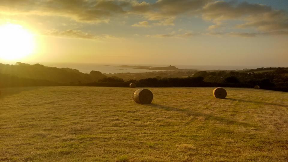The Granary fields