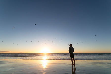 cris-moana-beach-sunset-&-birds1-sfw.jpg