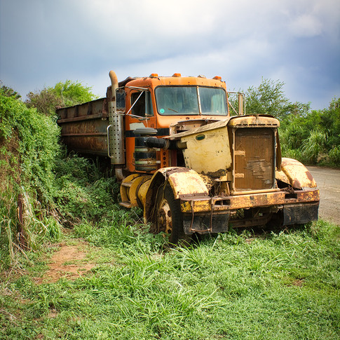 W Overgrown Truck.jpg