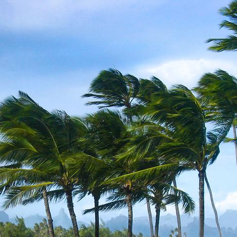 W Windy Kapaa Mount BGR.jpg