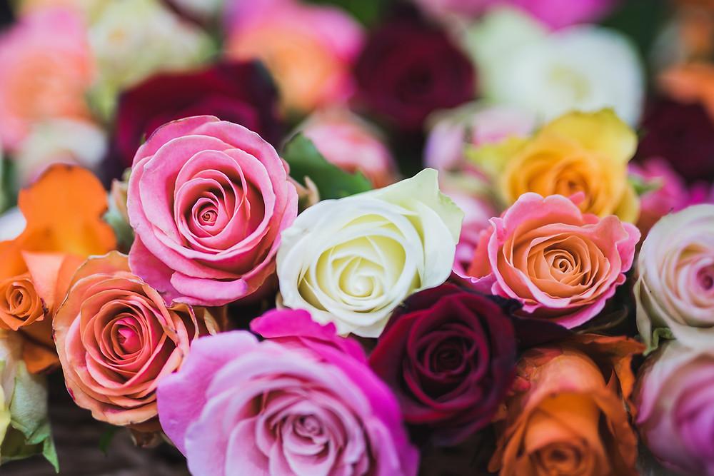 flowers, prepaid funerals geelong & melbourne