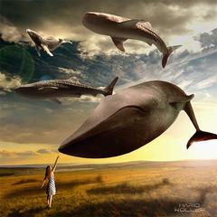 Surrealistic_4_Mario Koller.png