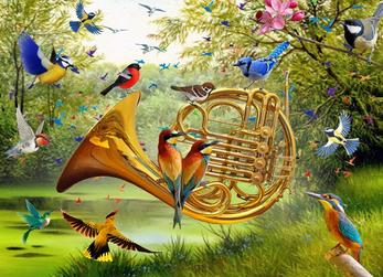 Birds_Angelo Bonito.png