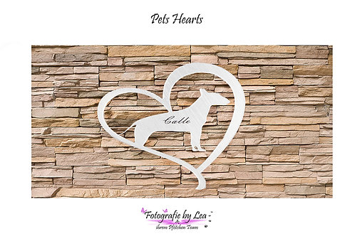 Pets Hearts