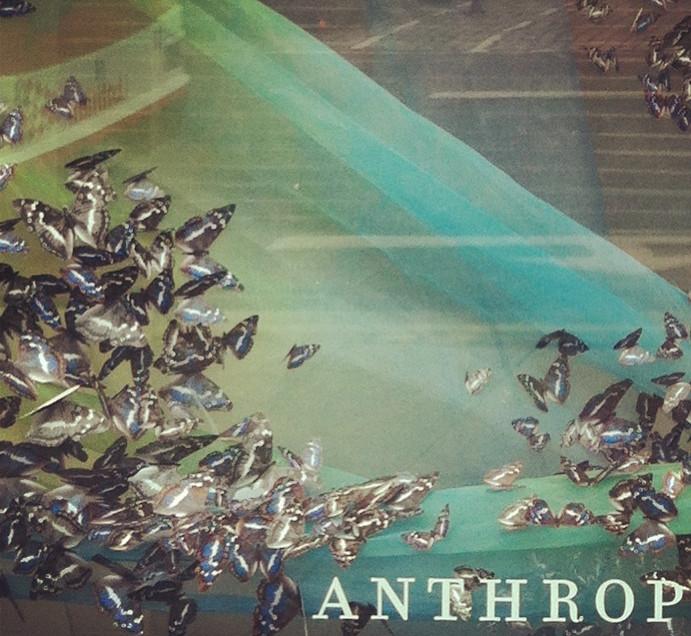 Anthropologie Spring