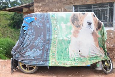 Mototaxi camouflé