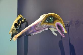 Crâne d'animal coloré # 2