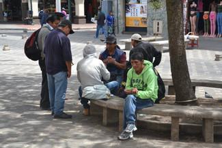 Joueurs de cartes sous l'arbre