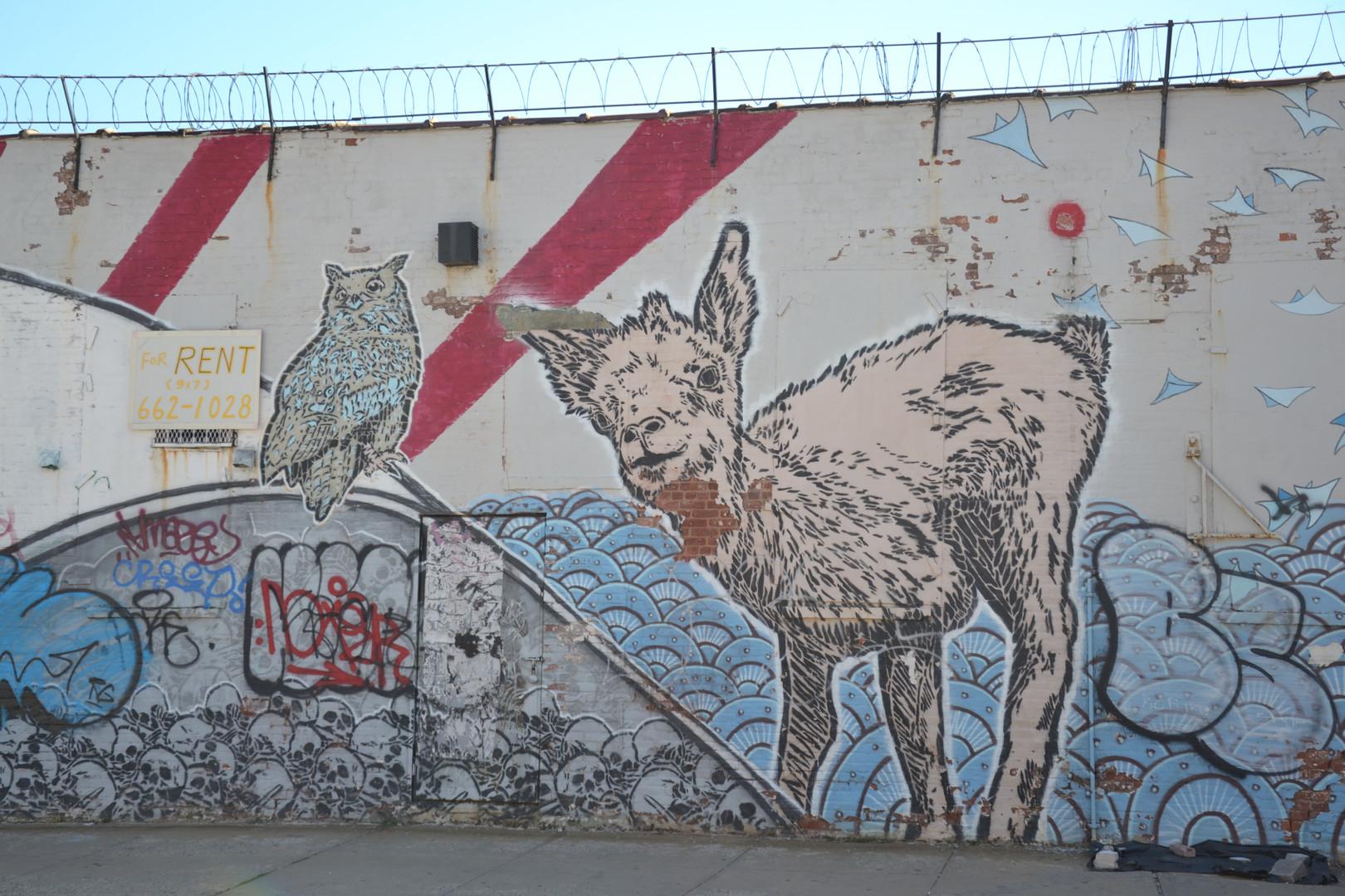 L'agneau et le hibou