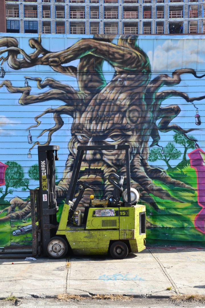 Tête d'arbre pas content