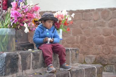 Le petit garçon aux camélias
