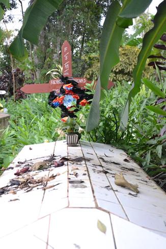 Cimetière tropical # 1