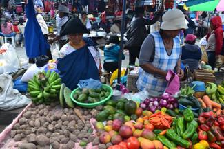 Légumes équatoriens