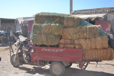 Camion de paille