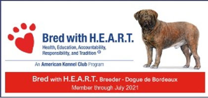 AKC Bred with HEART 2021