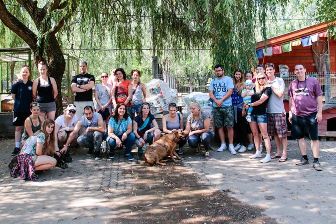 Önkéntes nap a NOÉ Állatotthonban