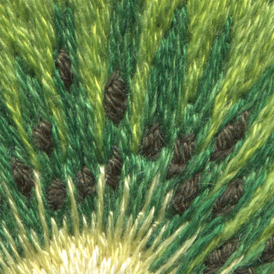 kiwi close up pips.jpg