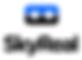 logo-Skyreal.png