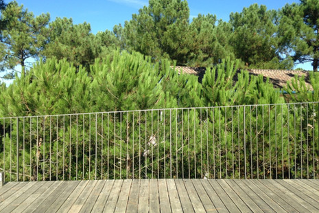 La maison dans les pins