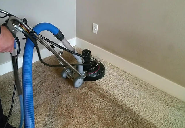 Carpet Final 2.jpg