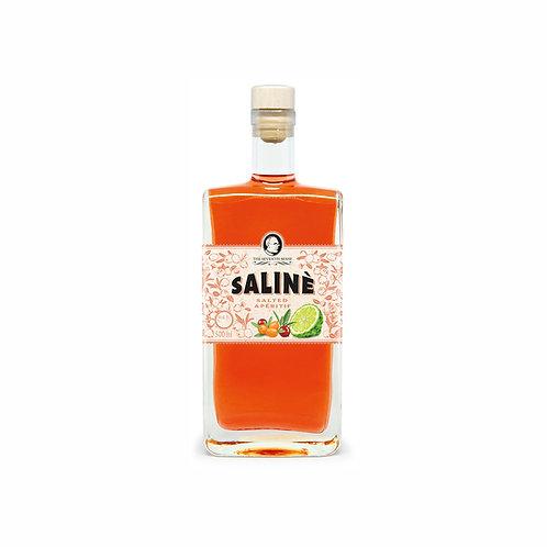The Seventh Sense Saliné