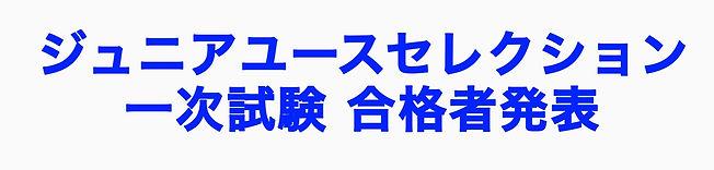 1次セレクション合格者バナー.JPG
