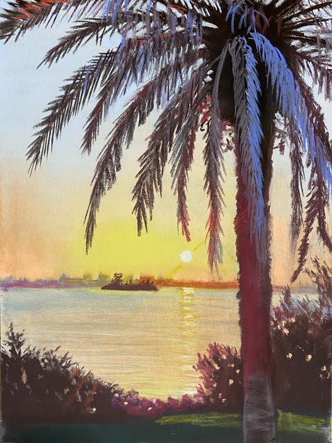 SUNSET PALM3.heic