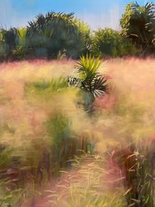 _Autumn Grasses_ Honeymoon Island Pastel