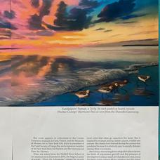 Tampa Bay Magazine Pg 4.jpg